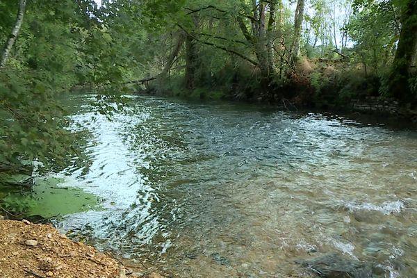 La rivière du Neuvon est polluée depuis trois semaines.