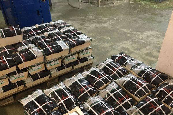 De dix à 30 tonnes d'huîtres livrées par jour