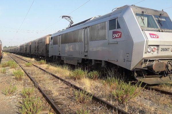Le train des primeurs stationné à la gare de triage de Nîmes.