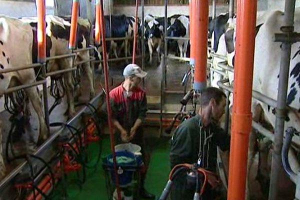 Aujourd'hui, Maxime et Fabrice vendent leur lait à perte et n'arrivent plus à se dégager de salaire.