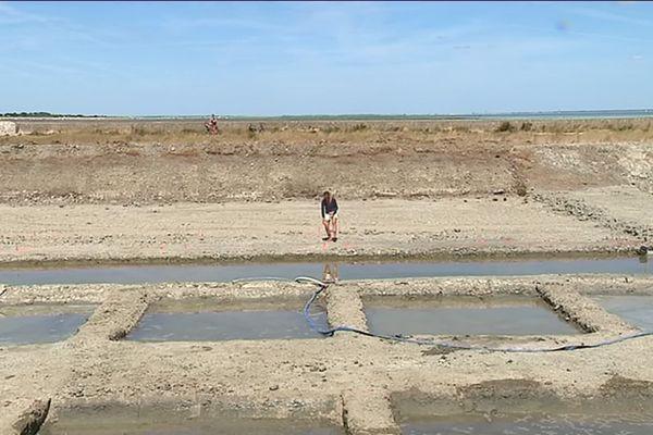 Céline participe à la restauration du marais