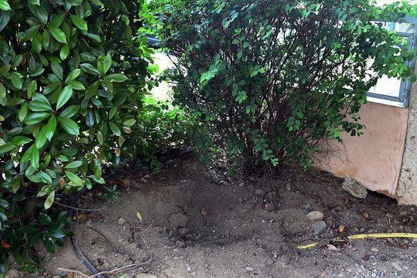 Après les aveux de l'accusée, les enquêteurs retrouvent la tête de la victime, enterrée dans un jardinet jouxtant l'appartement de Sophie Masala.