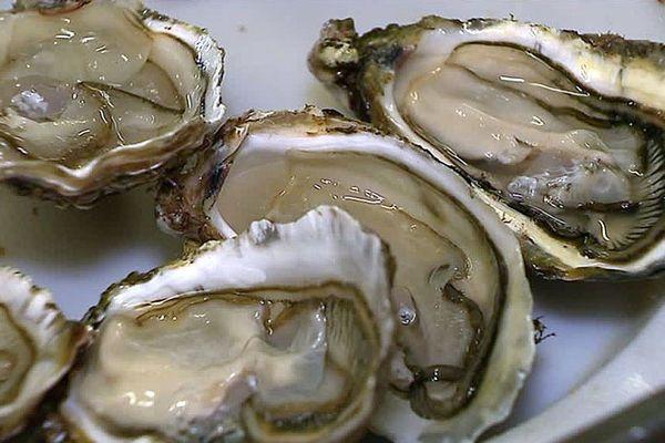 Etang de Thau (Hérault) - des huîtres 4 saisons, les huîtres à déguster en été.