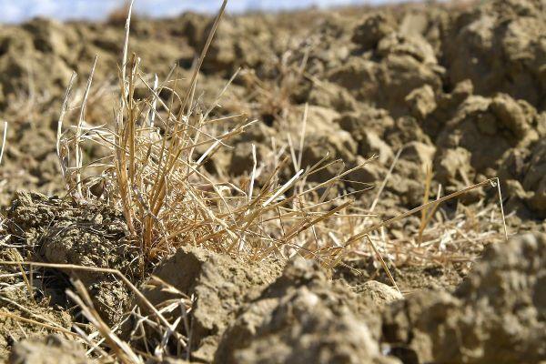Dans le Cantal, de nouvelles restrictions de l'usage de l'eau entrent en vigueur ce mardi 29 septembre en raison de la sécheresse.