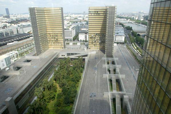 Le « jardin-forêt » de la Bibliothèque François-Mitterrand, au milieu du béton parisien.