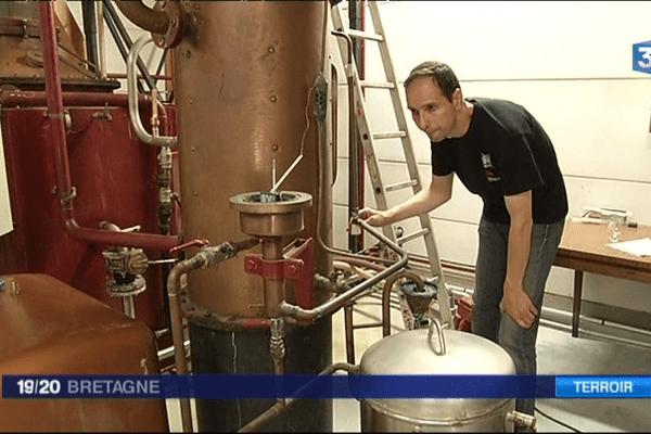 Distillation du Lambig dans un entreprise de Plomelin (29)