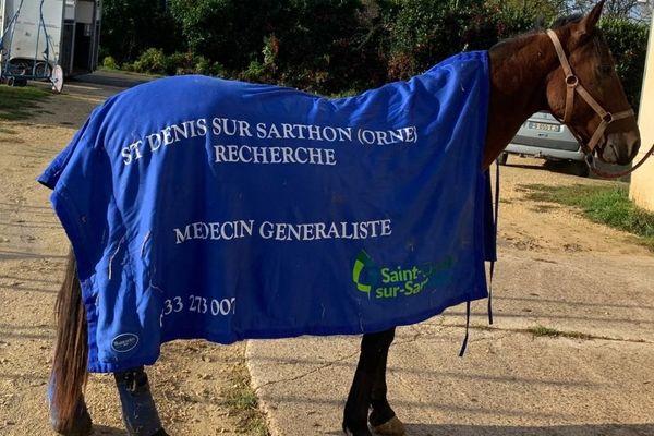 Grâce du Sarthon, une jument née en 2016 dans l'élevage du maire de Saint-Denis sur Sarthon, véhicule une petite annonce sur les champs de course : sa commune d'origine recherche un médecin !