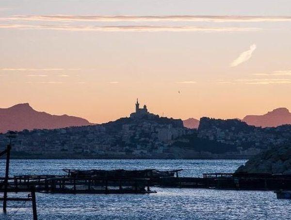 La ferme aquacole, située dans le 7ème arrondissement de Marseille - Îles du Frioul