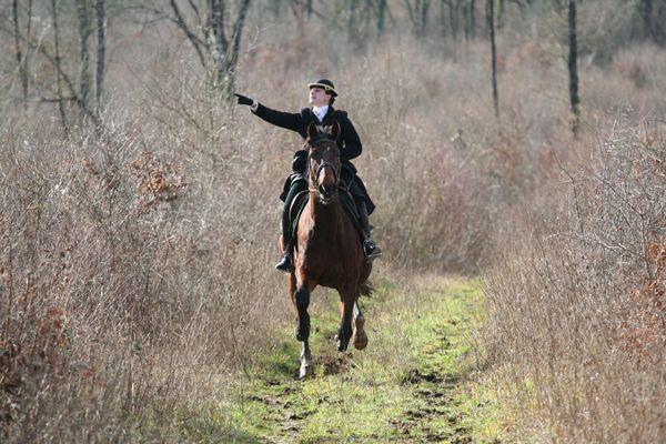 La chasse à courre peut se pratiquer à cheval