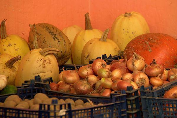 Oignons, courges spaghettis, pommes de terre... proposés gratuitement aux familles en difficulté à Tôtes (76) (image extraite d'une vidéo)