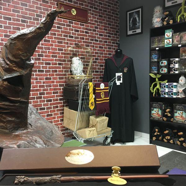 En vente: des baguettes magiques (comme celle d'Harry Potter, au premier plan), des robes de sorcellerie avec cravates ou écharpes, des peluches d'adorables chouettes, Niffleurs, Demiguises, et Botrucs...