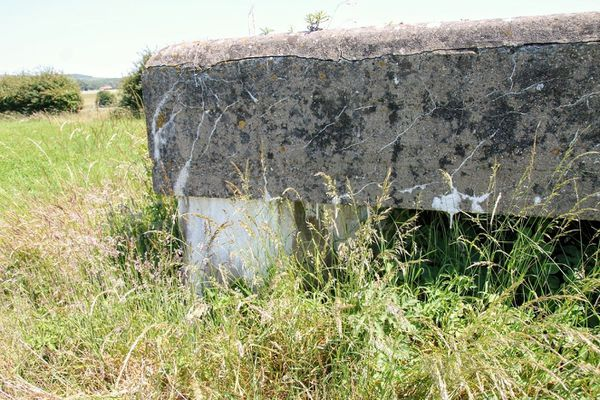 Les effets du temps sur cet ancien bunker de la base aérienne allemande d'Audembert.
