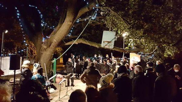 """Le chêne de le Castelnau-le-Lez, lors de la cérémonie """"Arbre remarquable"""" en décembre dernier."""