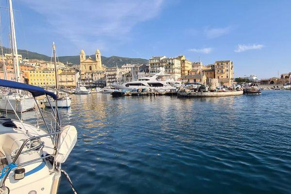 Depuis cinq jours les signalements alertant de la présence d'un phoque dans le vieux port de Bastia se multiplient.