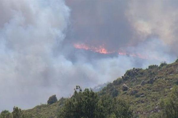 Un violent incendie a ravagé plus de 600 hectares à Montalba-le-Château, dans les Pyrénées-Orientales - 11 août 2016