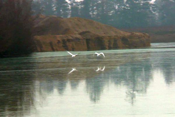 Une ancienne gravière de Rouvres-en-Plaine, en Côte-d'Or, est devenue un site d'observation de la LPO (Ligue pour la Protection des Oiseaux).
