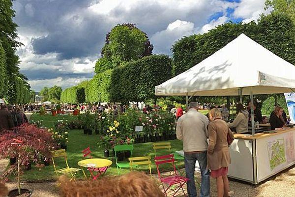 - Rouen : le festival Graine de jardin 2014