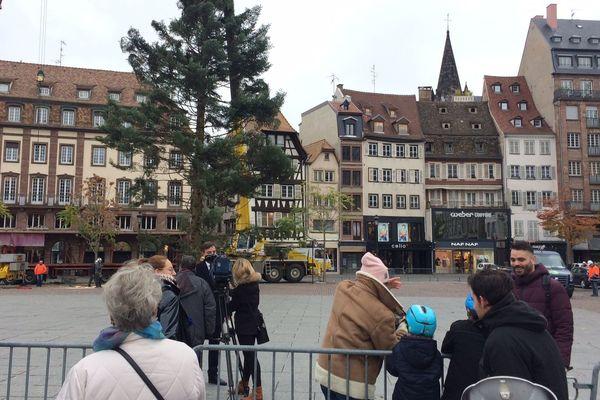 Des spectateurs attirés par l'installation du sapin, place Kléber à Strasbourg