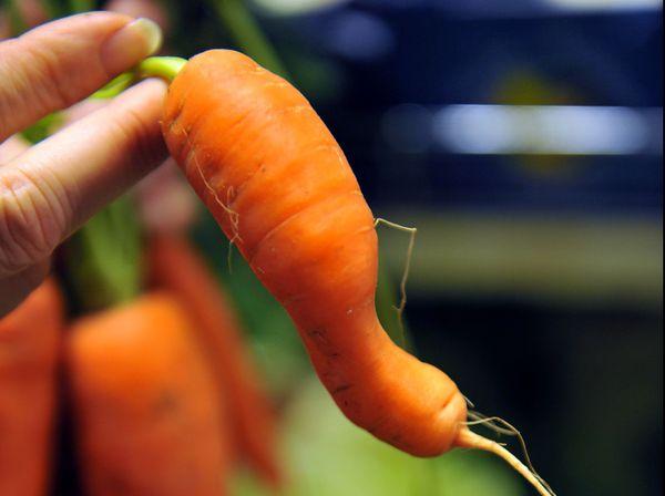 Vous pouvez commander vos légumes via la plateforme open food