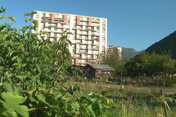 Les jardins partagés de la Buisserate s'étendent pour l'instant sur près de 5000 m2