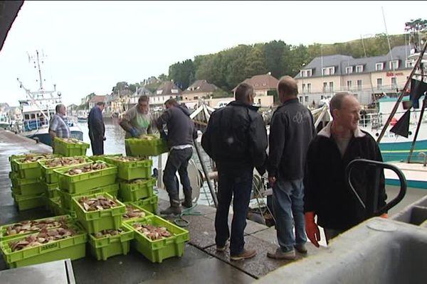 """Port-en-Bessin ce lundi avec l'arrivée des premiers """"coquillards"""" de la saison"""