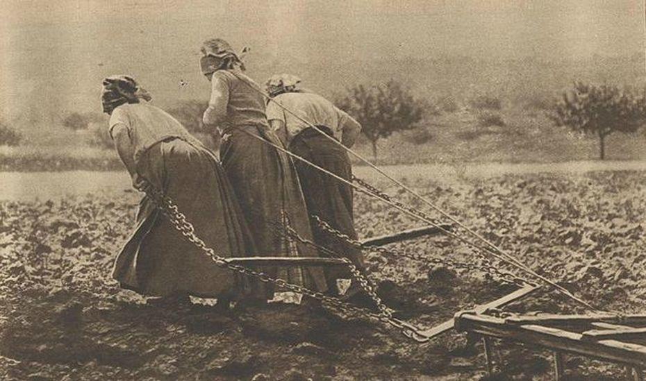 11 novembre 1918 : les femmes, ces oubliées de la Grande Guerre. 5edf6aa24b962_99517866_o-3898118