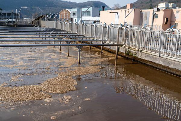 Station d'épuration de port Douvot à Besançon : la dépollution de l'eau n'est possible que grâce à la présence de bactéries dans les bassins.