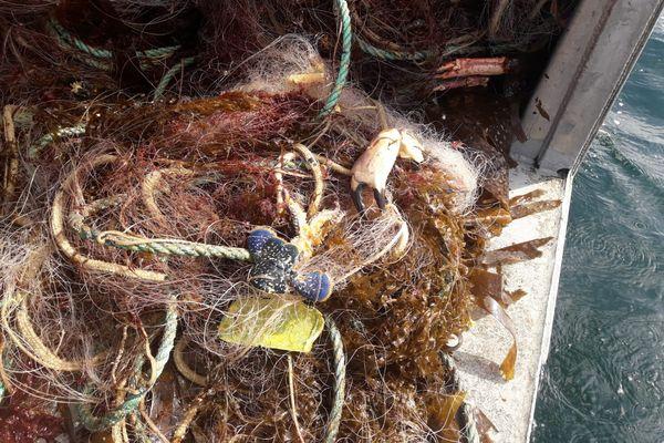 Un filet de pêche 200 mètres a été remonté au large de Douarnenez. Ces filets perdus en mer constituent une menace pour les espèces.