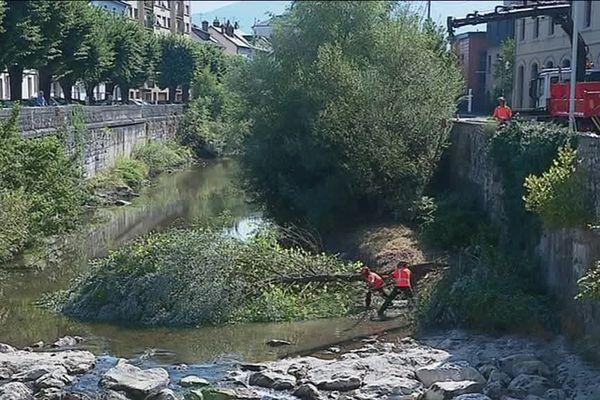 Les travaux consistent à couper les plus gros arbres dans la rivière