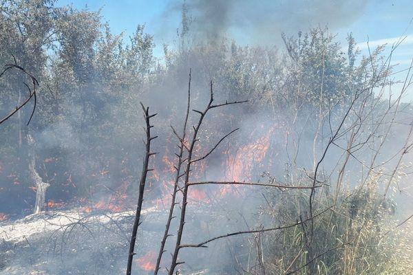 Bernis (Gard) - le trafic ferroviaire coupé durant 3 heures à cause d'un feu de broussailles - 30 mai 2019.