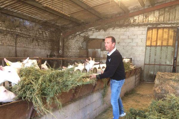 Aiffres (Deux-Sèvres) - Jérôme est éleveur caprin et céralier bio, l'Etat lui doit40.000 euros de la PAC pour son activité de 2016 à 2018.