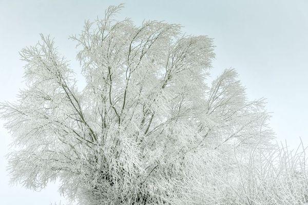 Dans la nuit du mardi 25 au mercredi 26 février, une offensive de l'hiver, avec des chutes de neige, est prévue en Auvergne.