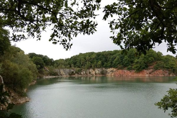"""Ce site de 35 hectares, près de Sées, pourrait accueillir prochainement """"le premier parc en immersion en Europe""""."""