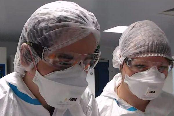 Pierre Bessiere et une de ses collègues travaillent sur l'étude de la transmission du SARS-Cov-2 au chats et aux furets.
