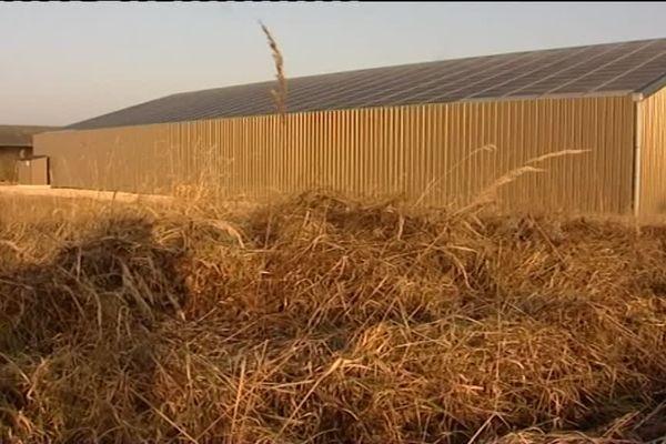 Dans cette exploitation agricole, on a fait le choix d'installer des panneaux solaires photovoltaïques sur le toit d'un hangar.