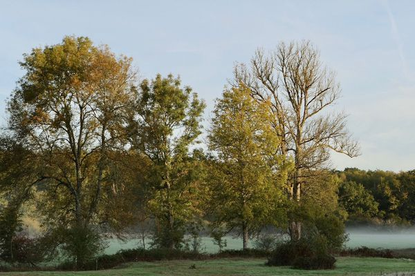 Dernières gelées matinales avant la remontée des températures dès demain mardi.