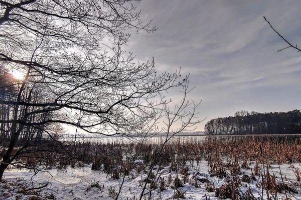 La neige fera son retour ce dimanche et blanchira les sols dans l'intérieur des terres.