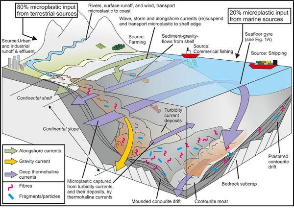 Les courants de plateau dispersent les microplastiques, de puissants écoulements par gravité rejettent  les microplastiques dans les eaux profondes, tandis que les courants de fond entraînés par thermohaline séparent les microplastiques en hotspots où ils se concentrent. L'efficacité de leur stockage à long terme dépend de l'intensité de l'activité  du fond et du taux d'enfouissement.