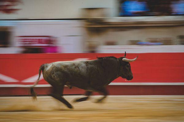 La société nîmoise Simon Casas Production, organisatrice de corridas, qui s'était pourvue devant le Conseil d'Etat afin de bénéficier pour ses spectacles d'une TVA réduite à 5,5% s'appliquant à la culture a vu sa demande rejetée.
