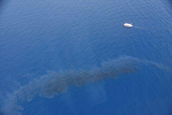 Samedi 12 juin 2021, au large de la Corse : photo aérienne prise par la Marine nationale qui montre une nappe de pétrole, contenant des hydrocarbures lourds, dans le secteur d'Aleria-Solenzara.
