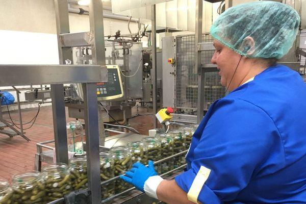 Dans le département du Loir-et-Cher, l'usine de conditionnement du groupe Reitzel emploie 85 personnes à Bourré.
