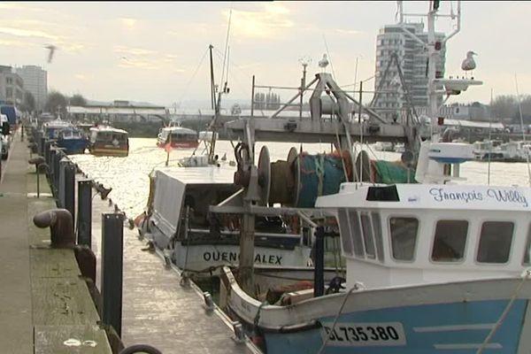 Un Brexit sans accord serait une catastrophe pour les pêcheurs des Hauts-de-France.