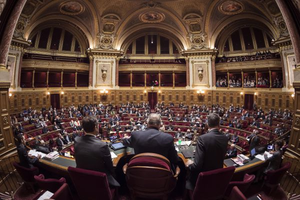 Les sénateurs lors d'une session dans l'hémicycle le 17 novembre 2016. (Archives)