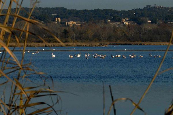 L'étang de Berre inscrit au patrimoine mondial de l'Unesco. La candidature est lancée...