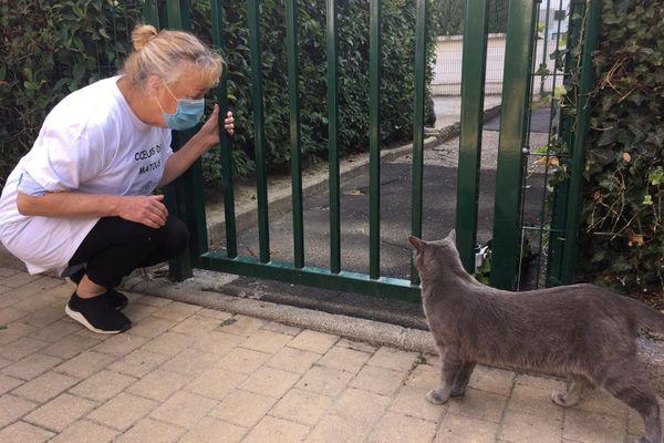 Sylvianne Nicolon nourrit les chats de la résidence du Mas Drevon depuis quelques années déjà - septembre 2020