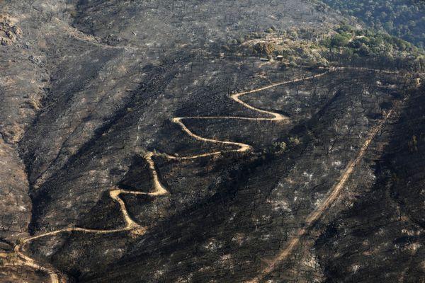 Le Luc dans le Var le 20 août 2021. Ce feu aura coûté la vie à deux personnes, brûlé plus de 7.000 hectares de forêt et entraîné l'évacuation de milliers de personnes.