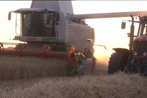 L'agriculture dans la nouvelle région