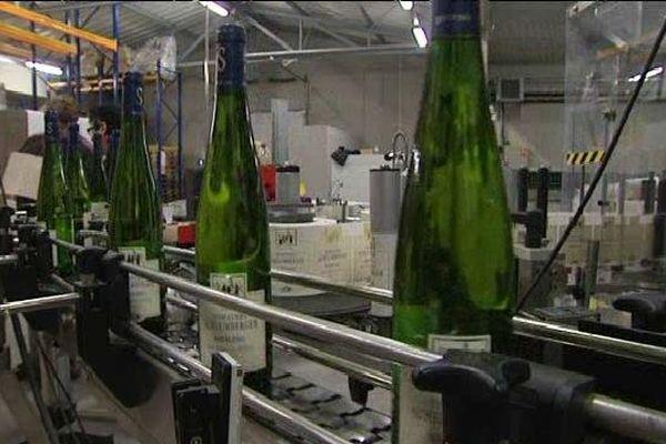 Le plus grand domaine viticole de la région exporte les deux tiers de sa production