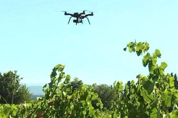 Il vole et voit tout... l'oeil humain ne peut rivaliser avec le drone