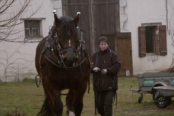 Marie-Line avec un cheval de trait.